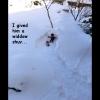 goin-sleddin-08