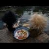 wiishuandmiike-08