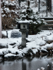 Snowview in the snow