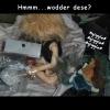 mommadpackagesss-33