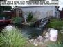 Random Pond Pics