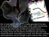 poobanatordetail