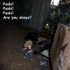 packagefromedandadriana-arrival-09