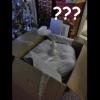 packagefromedandadriana-arrival-24