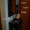 tinkfaceup01